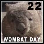 Happy WOMbat! Day - October 22nd